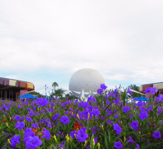 Places to Take a Break in Epcot