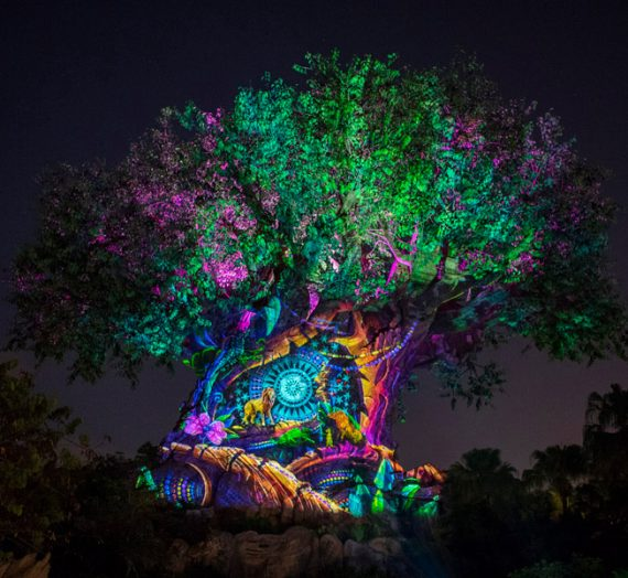 How Many In Your Party? A Guide to Disney's Animal Kingdom Attractions Seating
