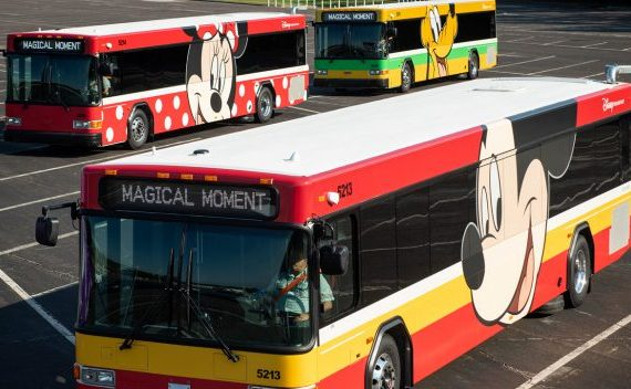 New Look for Disney Buses