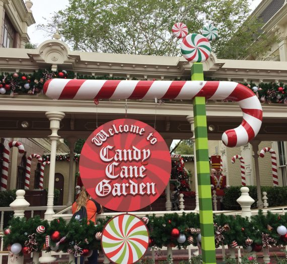 Meet Santa Claus at Magic Kingdom Starting November 28th