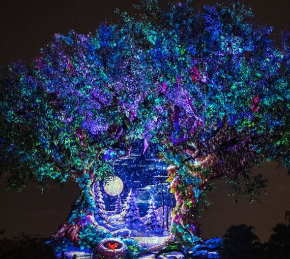 Animal Kingdom Rings in 2020 with Special Offerings