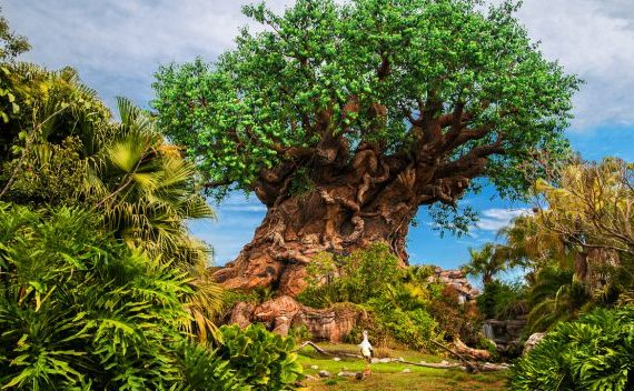 Week Long Celebration at Animal Kingdom in Honor of Earth Day